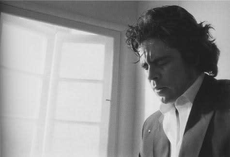 Benicio Del Toro, 2002