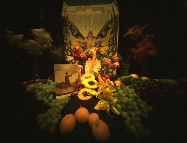 Richmond, VA: Fruits and Flowers with Postcard #2, 1981