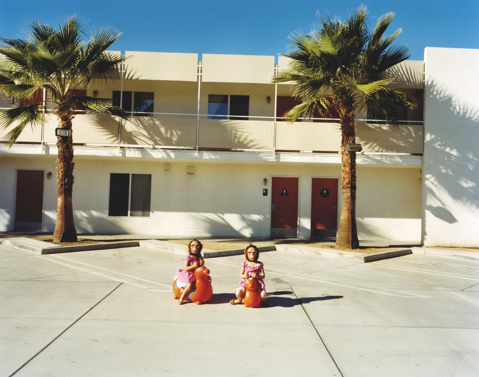 Untitled (Tree Twins)
