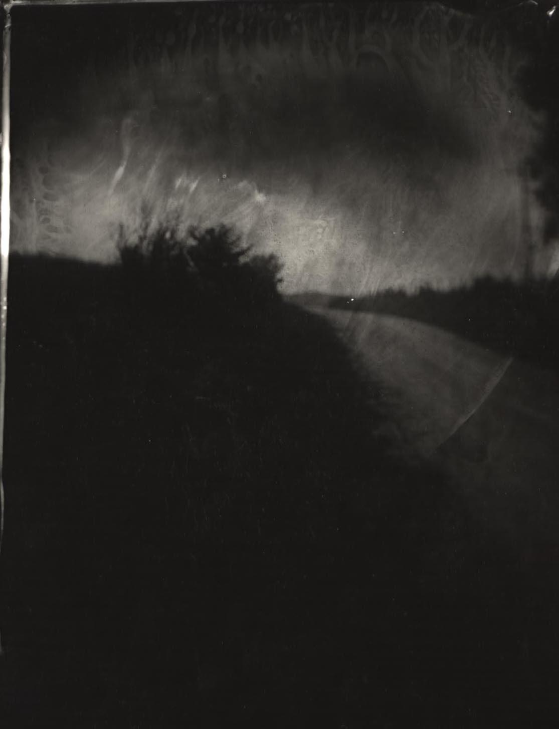 Untitled (Wilderness #19), 2001