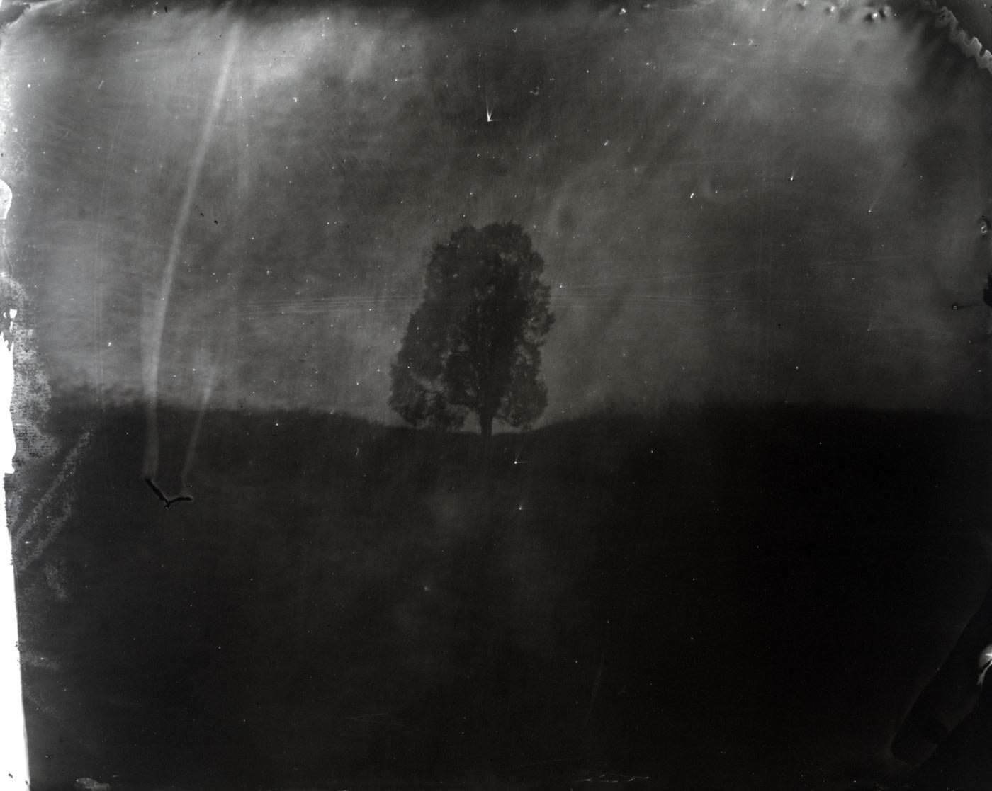 Untitled (Manassas #1), 2000
