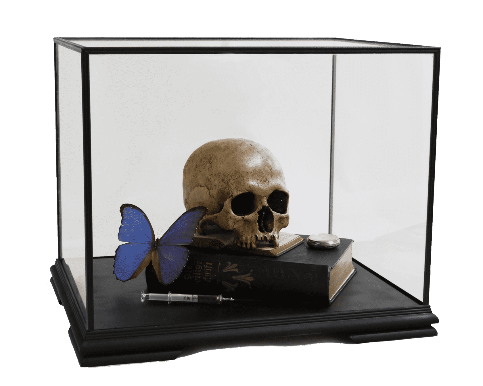 the connor brothers Memento Mori with Heilige Schrift and Morpho Didius Cast human skull, 19th Century books, antique syringe and...