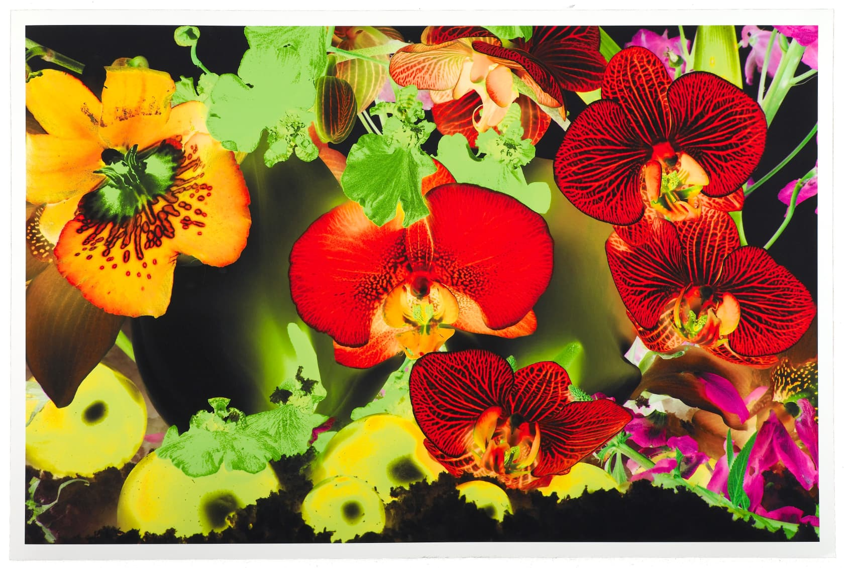 Marc Quinn At the Far Edges of the Universe #3 Pigment Print