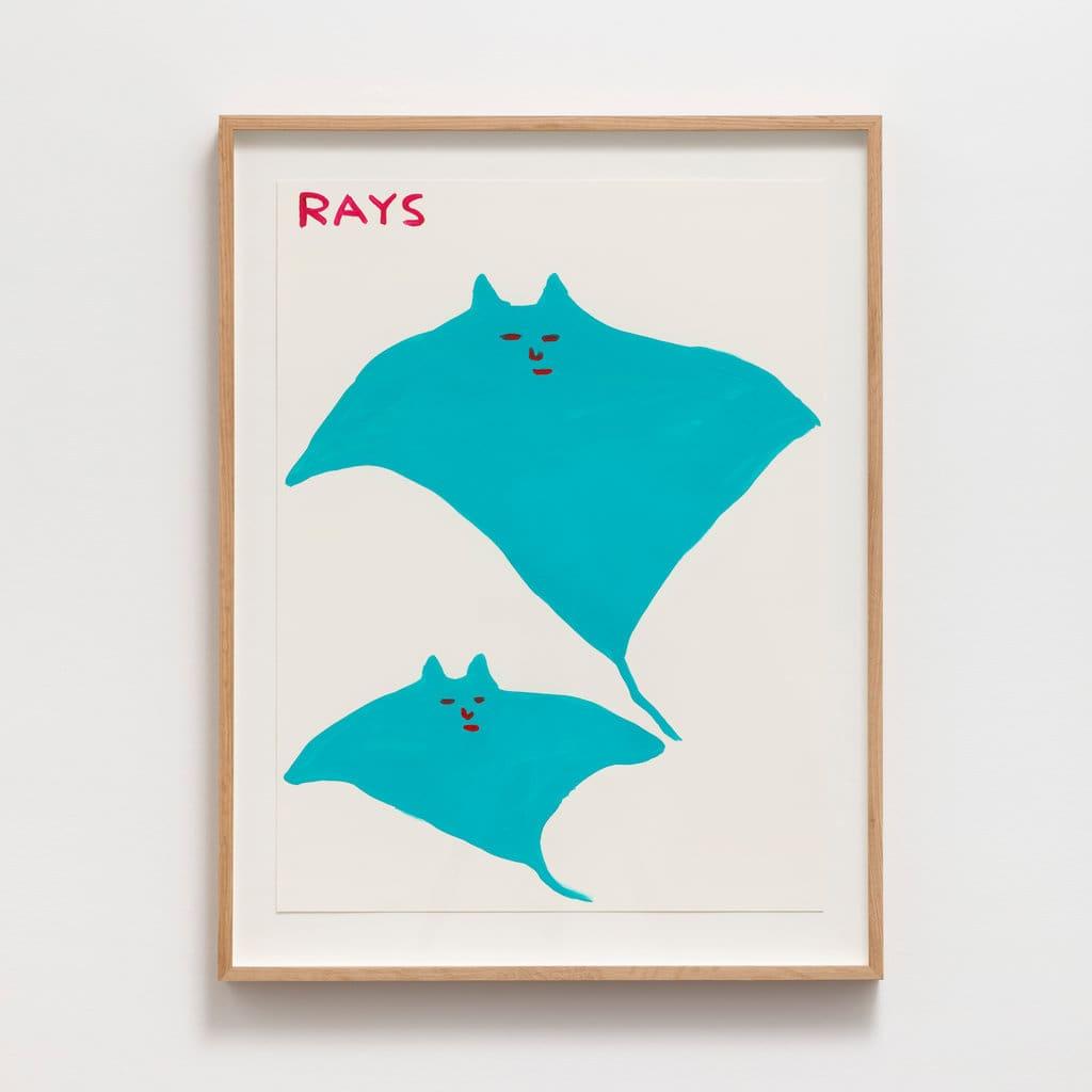 David Shrigley Rays Acrylic on paper