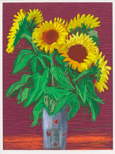 David Hockney Sunflowers IPad Drawing in Colours