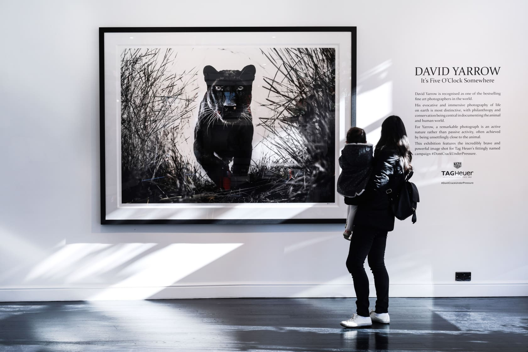 David Yarrow Black Panther Archival pigment print