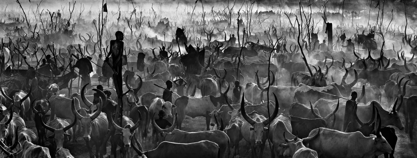 David Yarrow, Mankind II (B&W), 2015