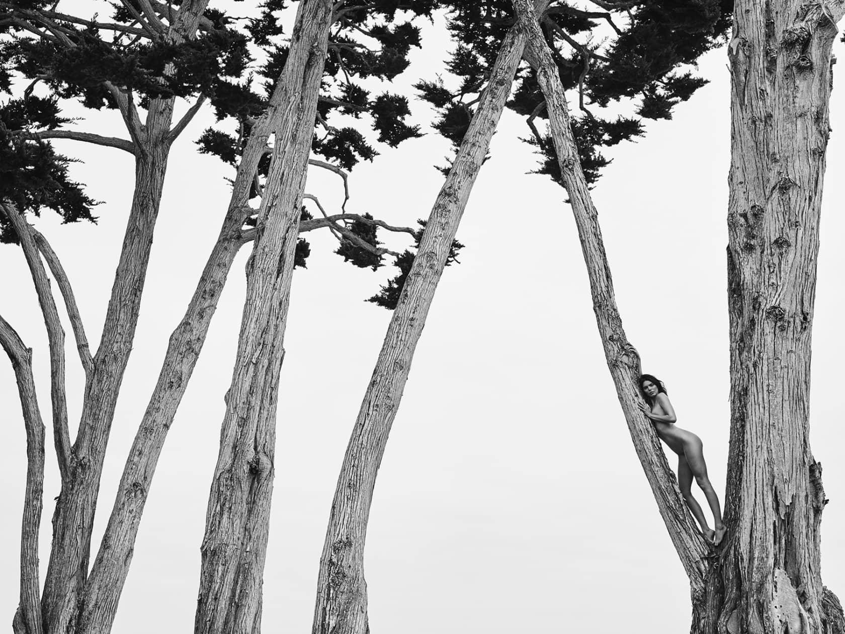 Russell James, Kendall in Treetops Santa Barbara 2018, 2018