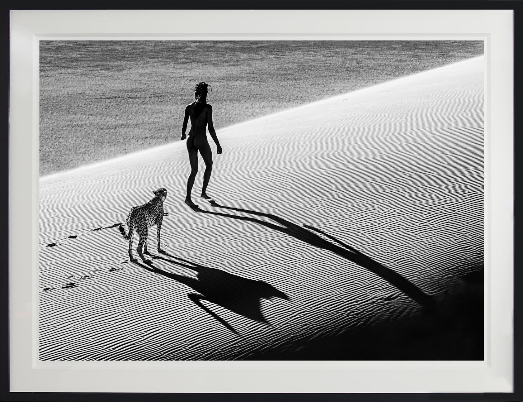 David Yarrow, On The Catwalk, 2013