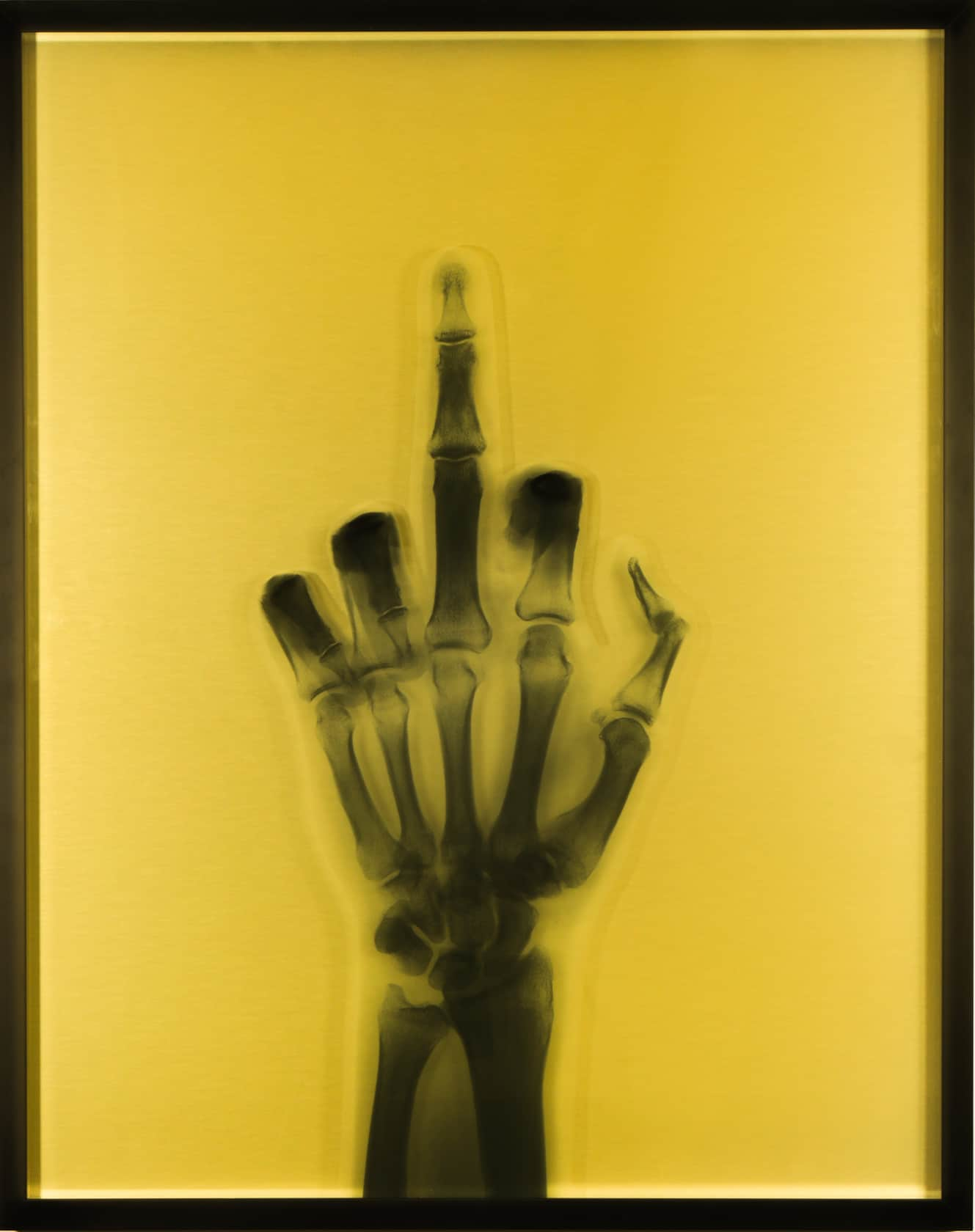 Nick Veasey, Gold Finger, 2021