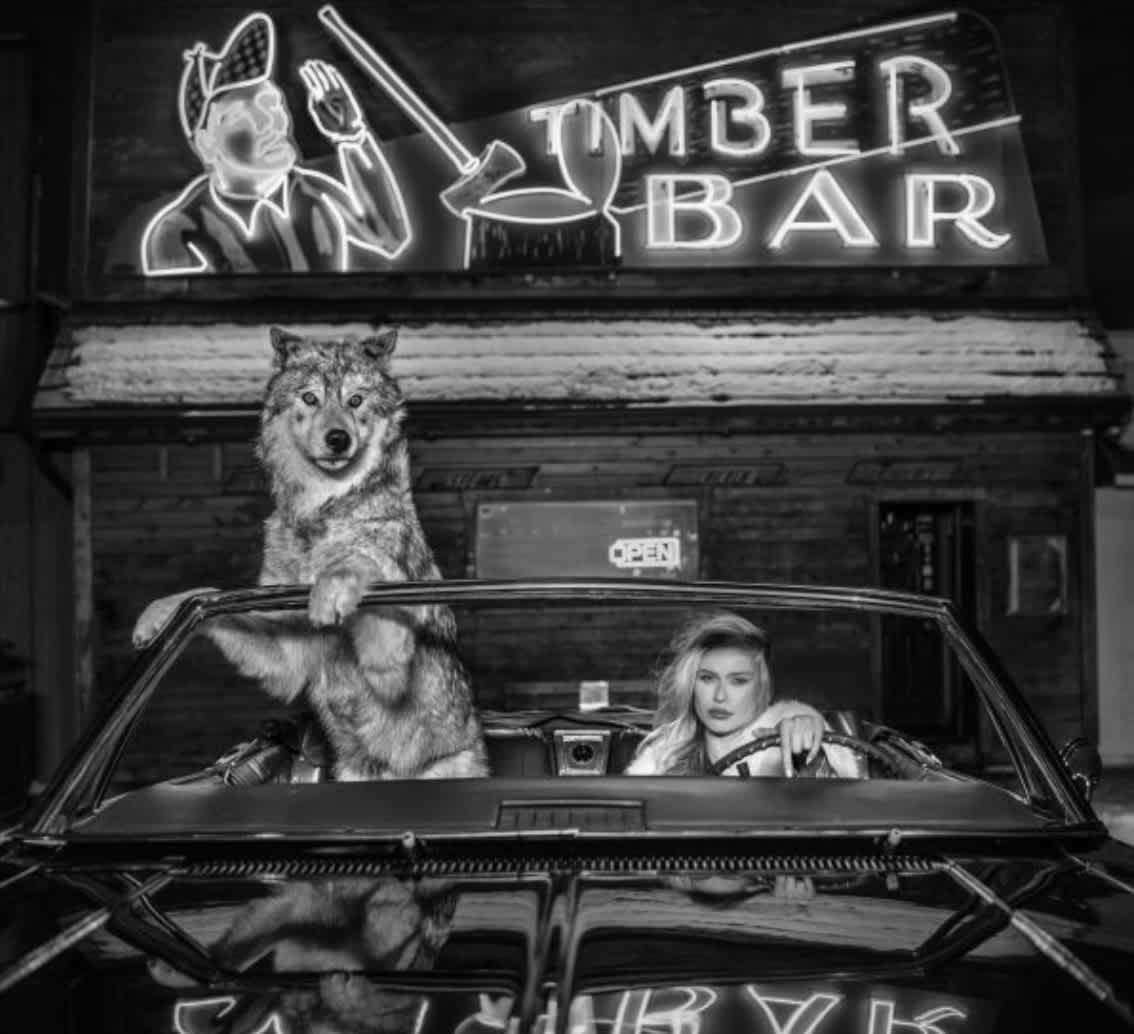 David Yarrow Coyote Ugly Archival pigment print