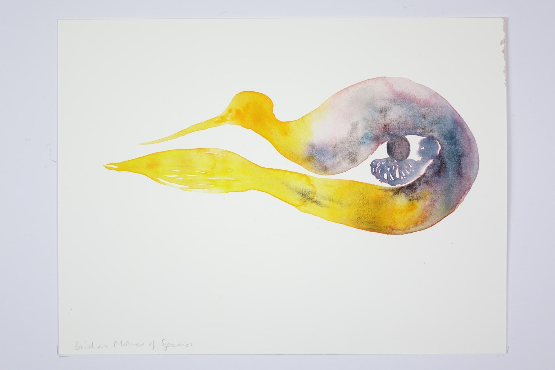 Kate Walters, Bird as mother of Species, 2018
