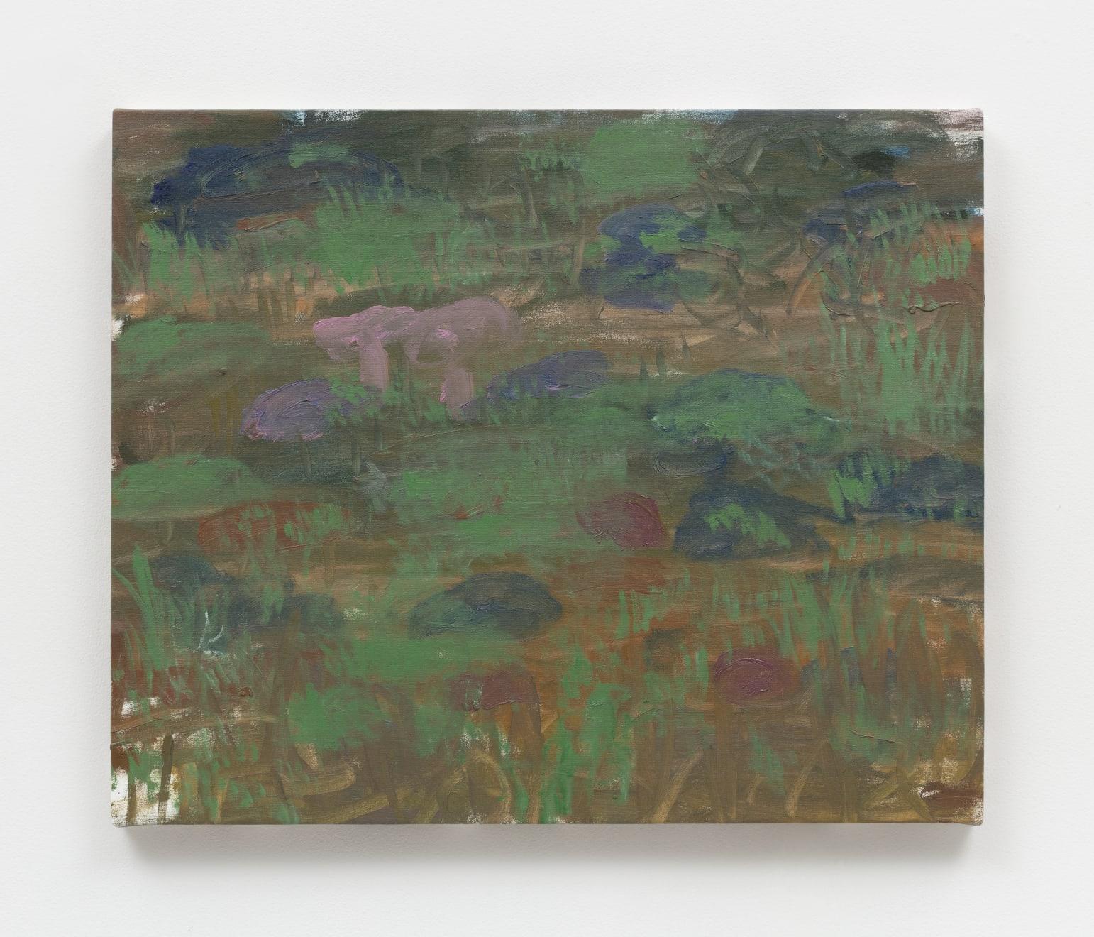 Trevor Shimizu, Moss (1), 2019