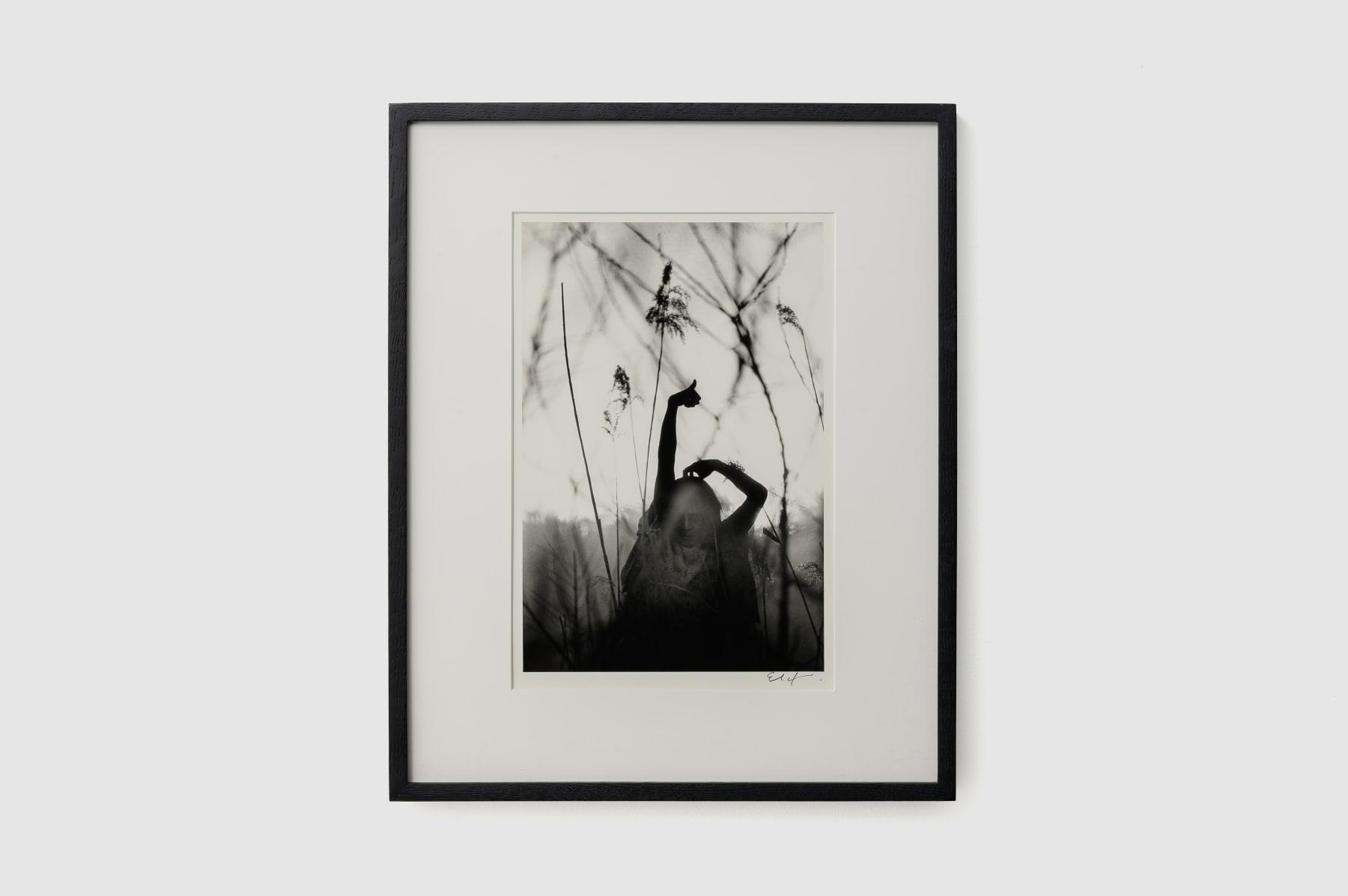 Eikoh Hosoe, Kamaitachi #34, 1965/1989