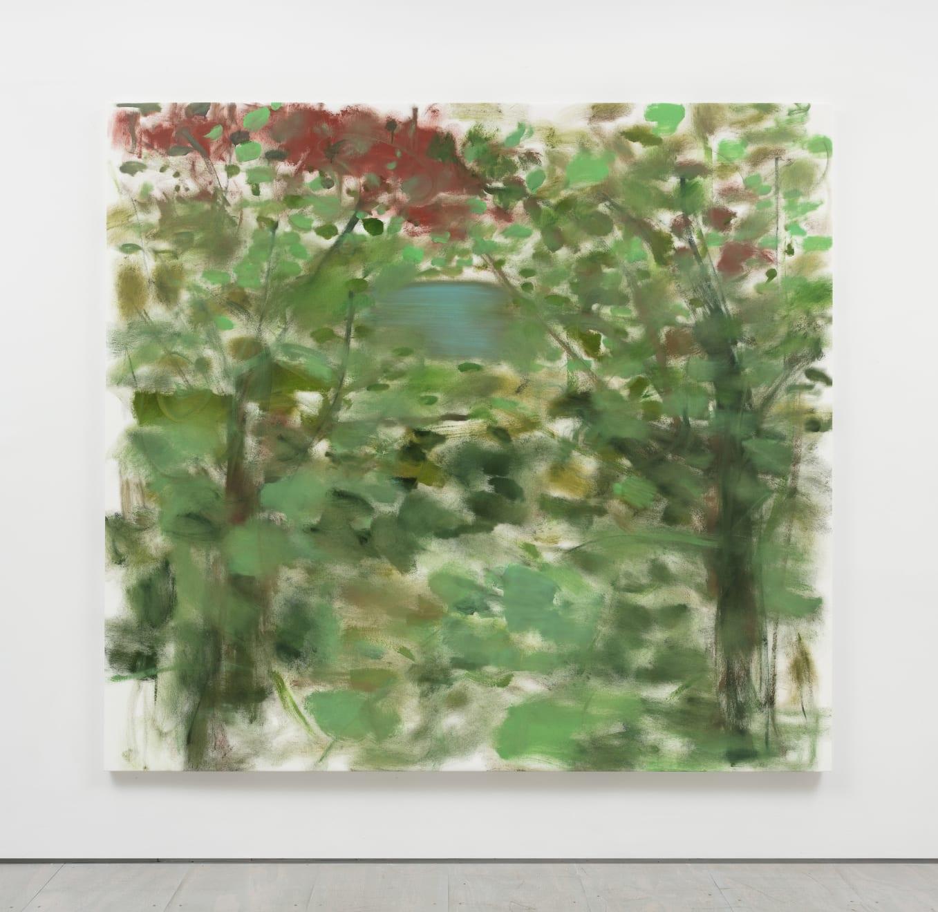 Trevor Shimizu, Water Through Trees, 2020