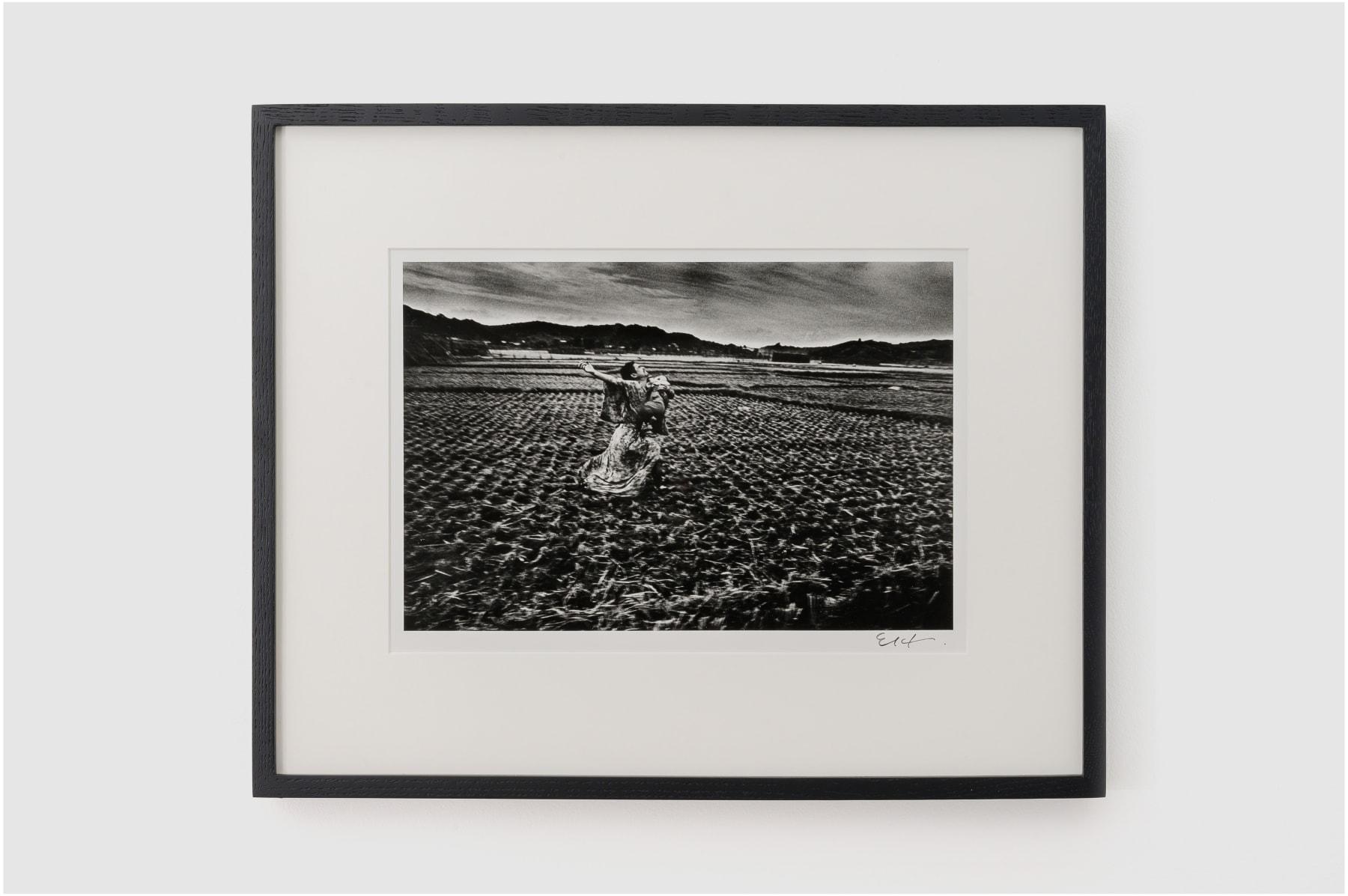 Eikoh Hosoe, Kamaitachi #37, 1965/2014