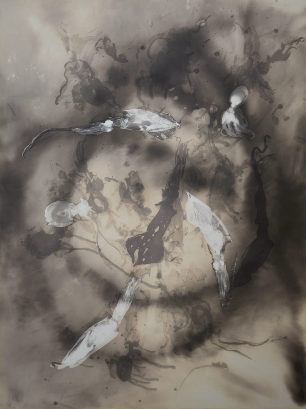 Kunié Sugiura, Squids 1, 1990