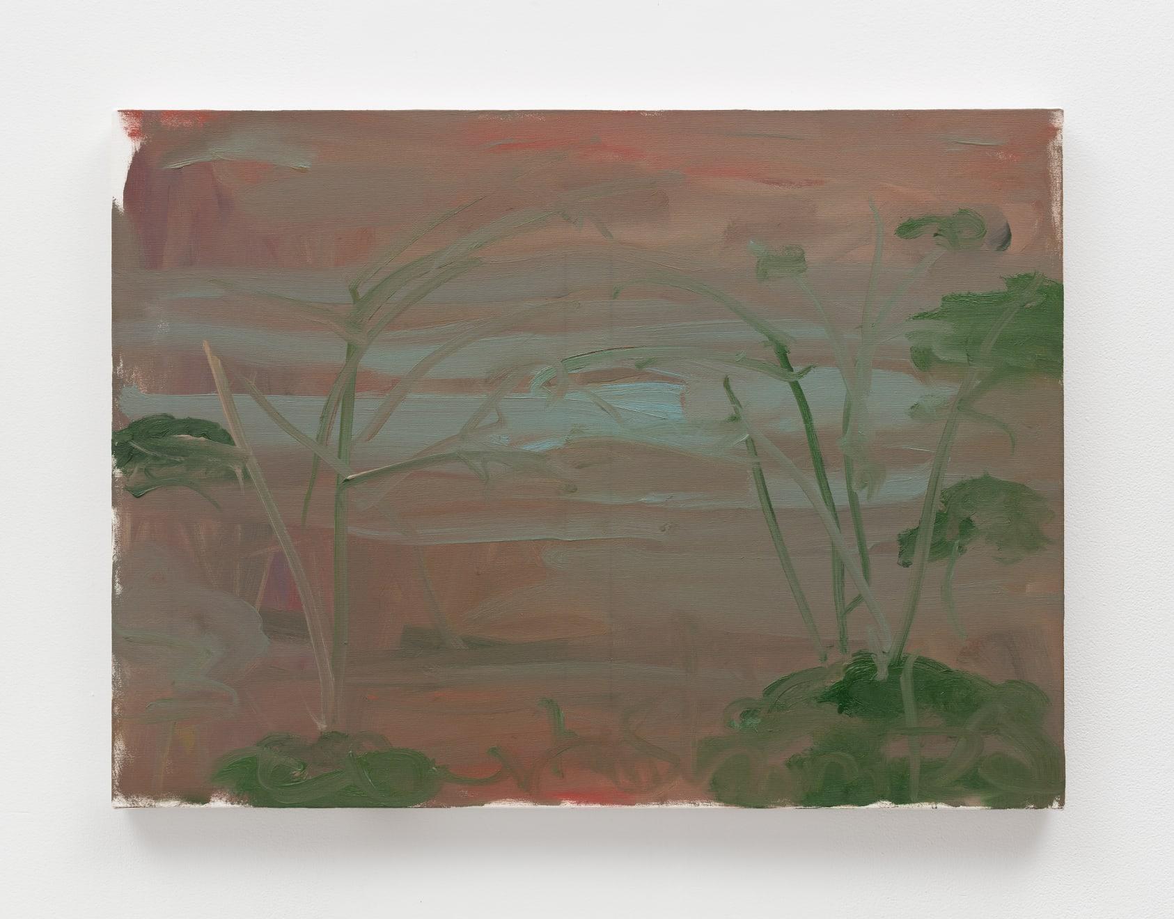 Trevor Shimizu, Ocean and Trees, 2019