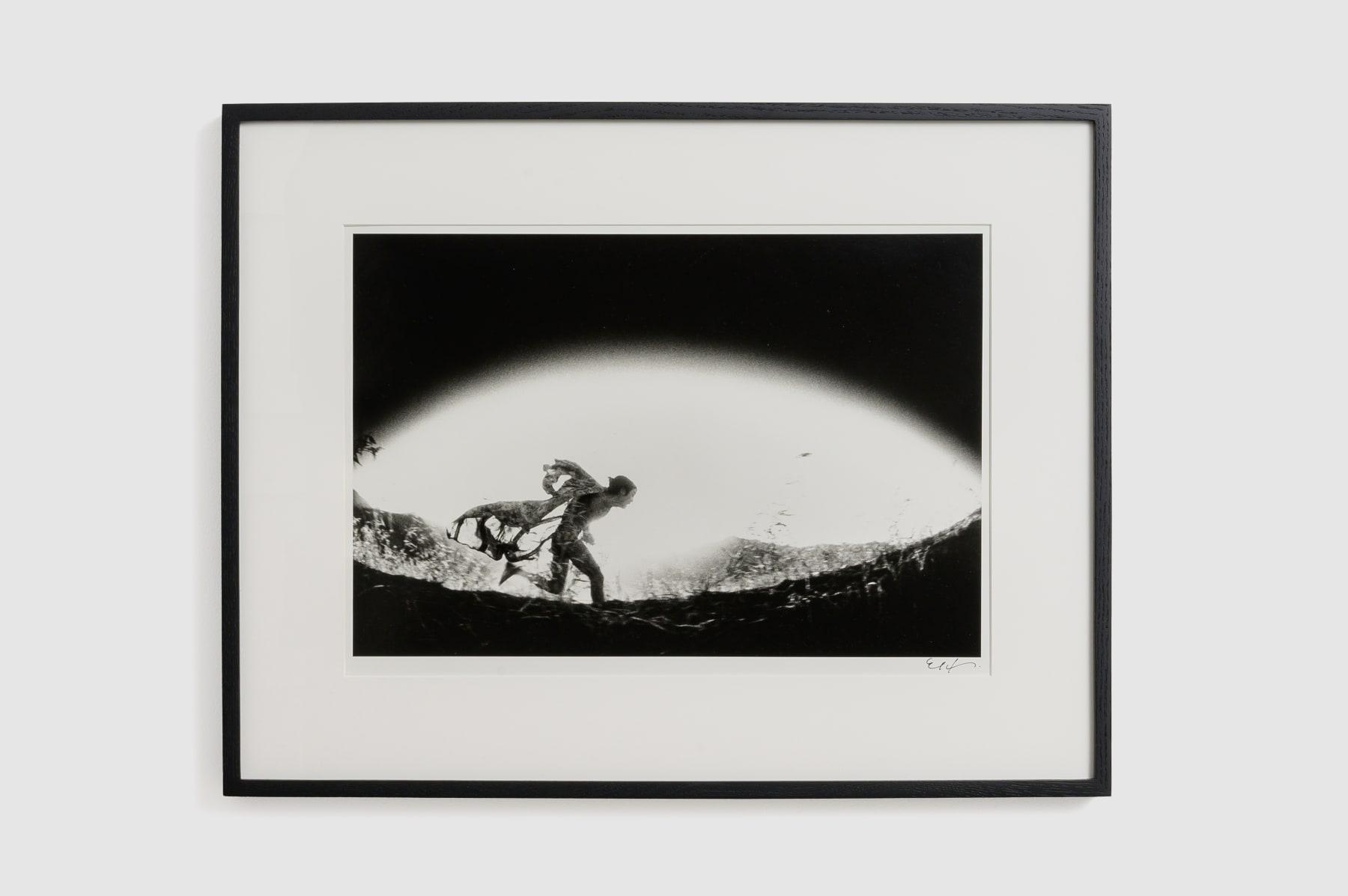 Eikoh Hosoe, Kamaitachi #31, 1968/2015