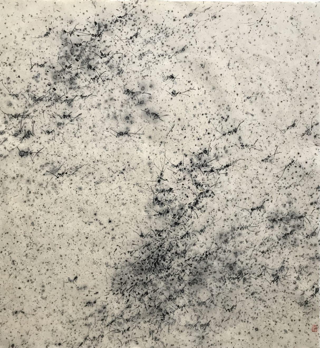 Zhang Yanzi 章燕紫, Limitless π 無盡π, 2017