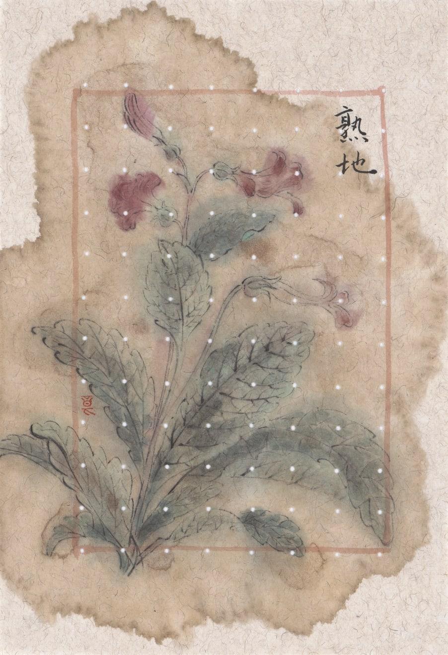 Zhang Yanzi 章燕紫, Six Flavour Rehmanni 六味地黄丸, 2014-2015