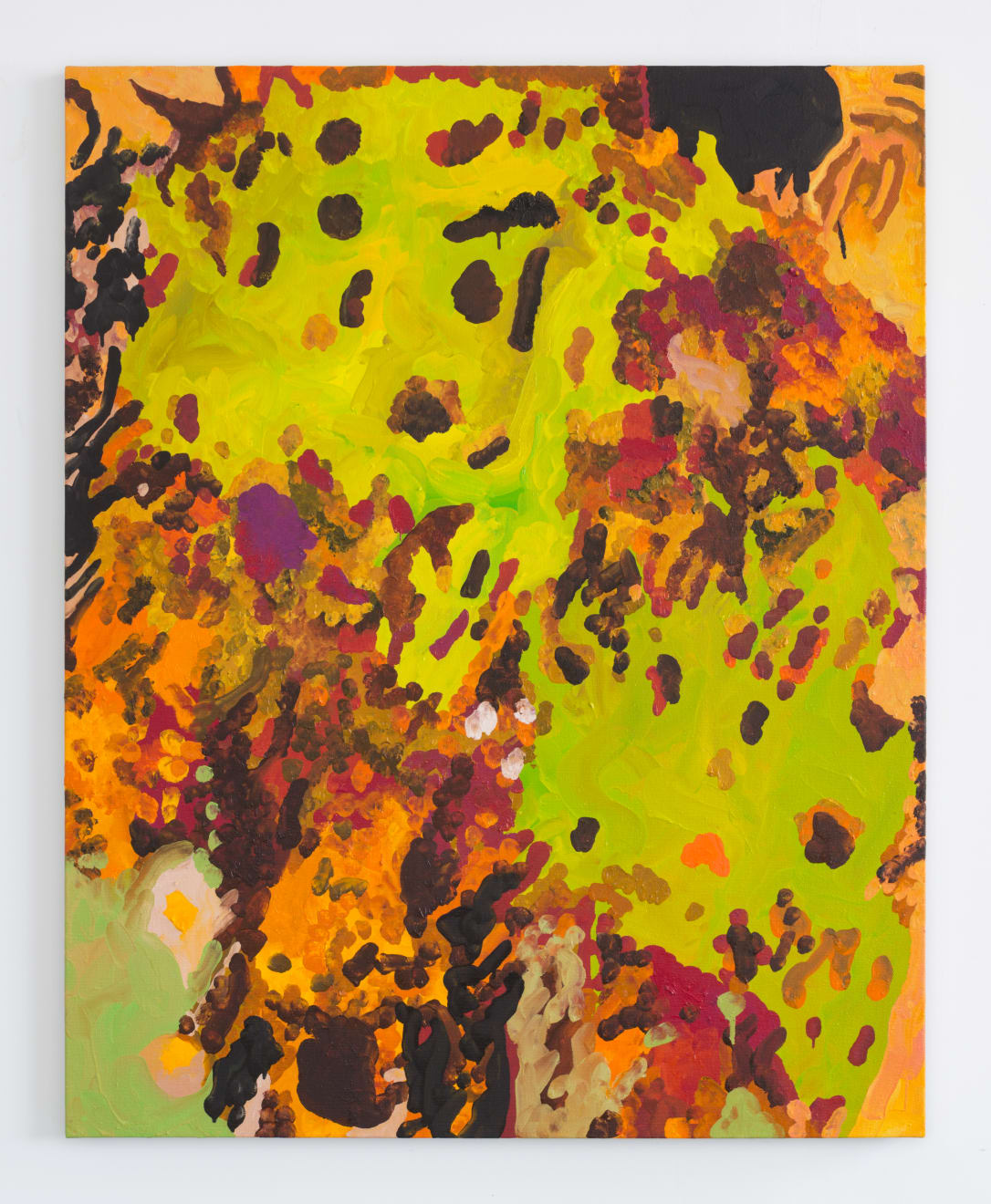 Rob Ventura, Yellow Dock, 2017