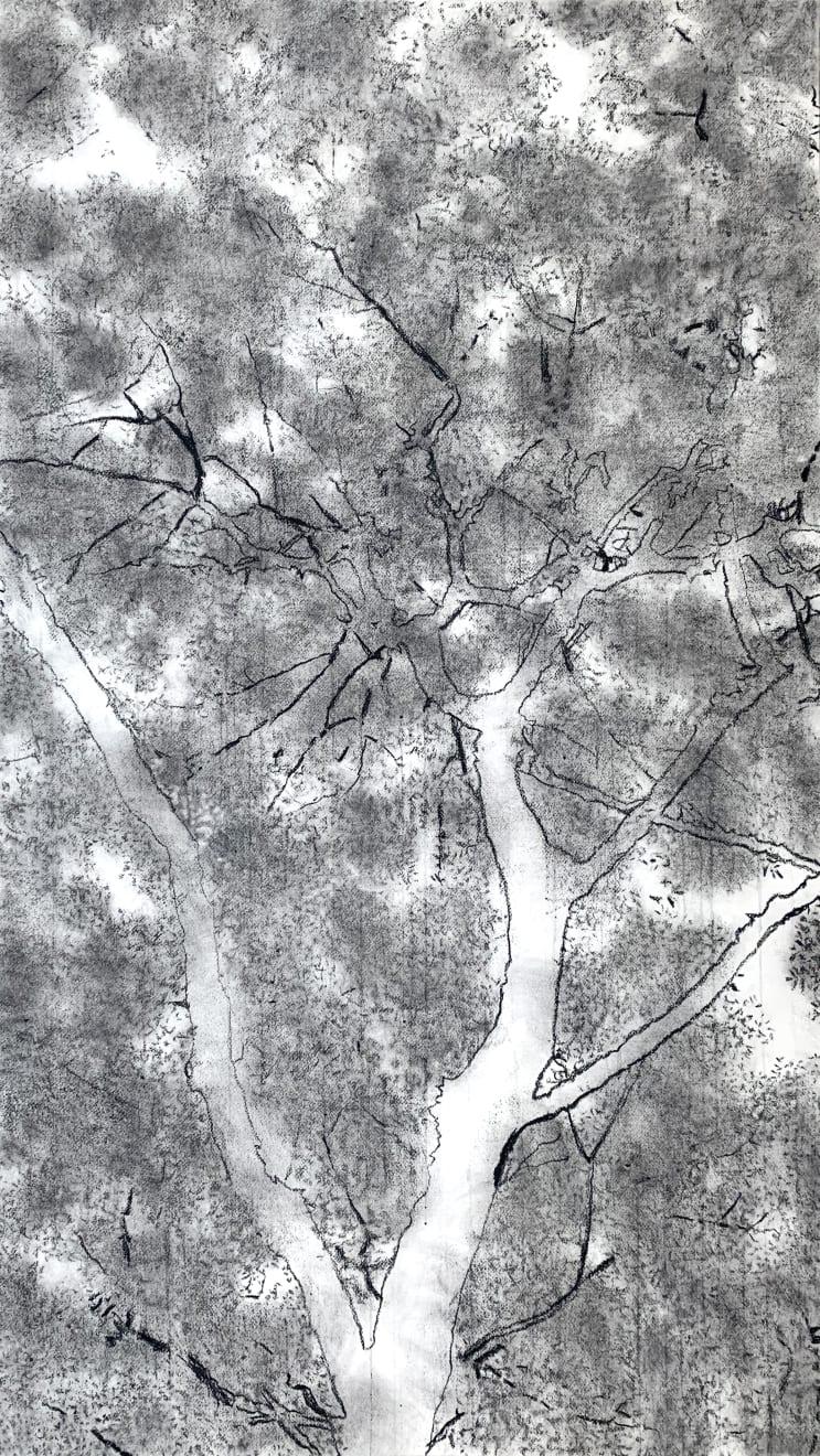 Jeffrey Blondes, 20-10D Bois de Mametz 06h33m00s, 2020
