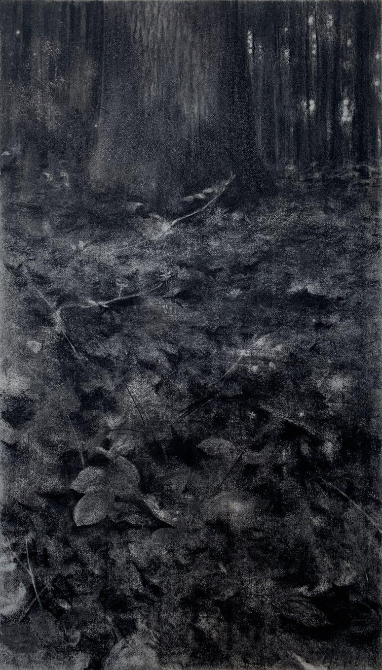 Jeffrey Blondes, 20-06D Bois de Mametz 00h17m00s, 2020