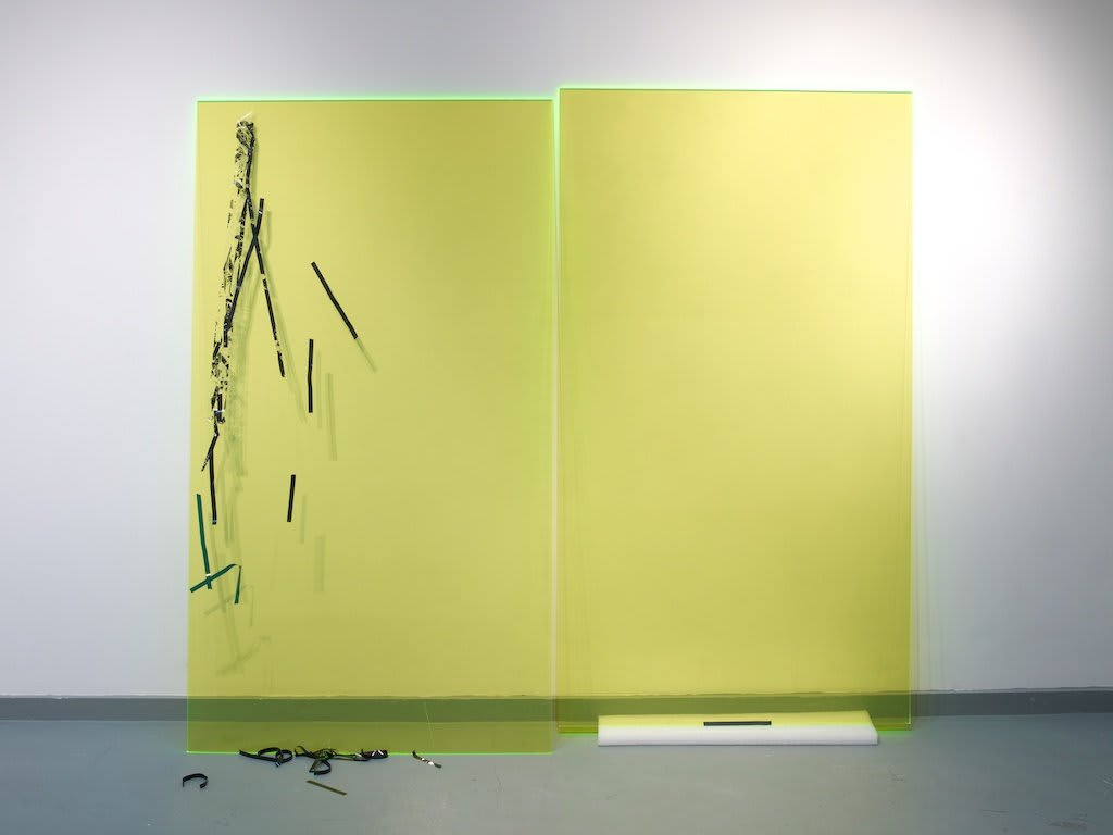 Jennifer Douglas, Misery # 2 (Acid Green), 2012