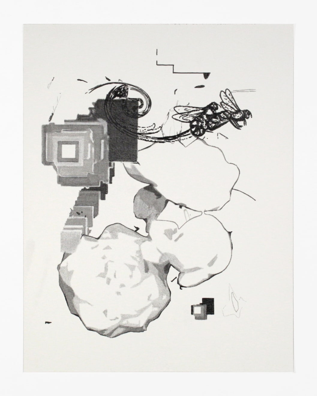 Robert Ruello Botanical_06, 2004 pencil on archival digital print on paper 11 x 8 1/2 in (27.9 x 21.6 cm) RR 115 $900