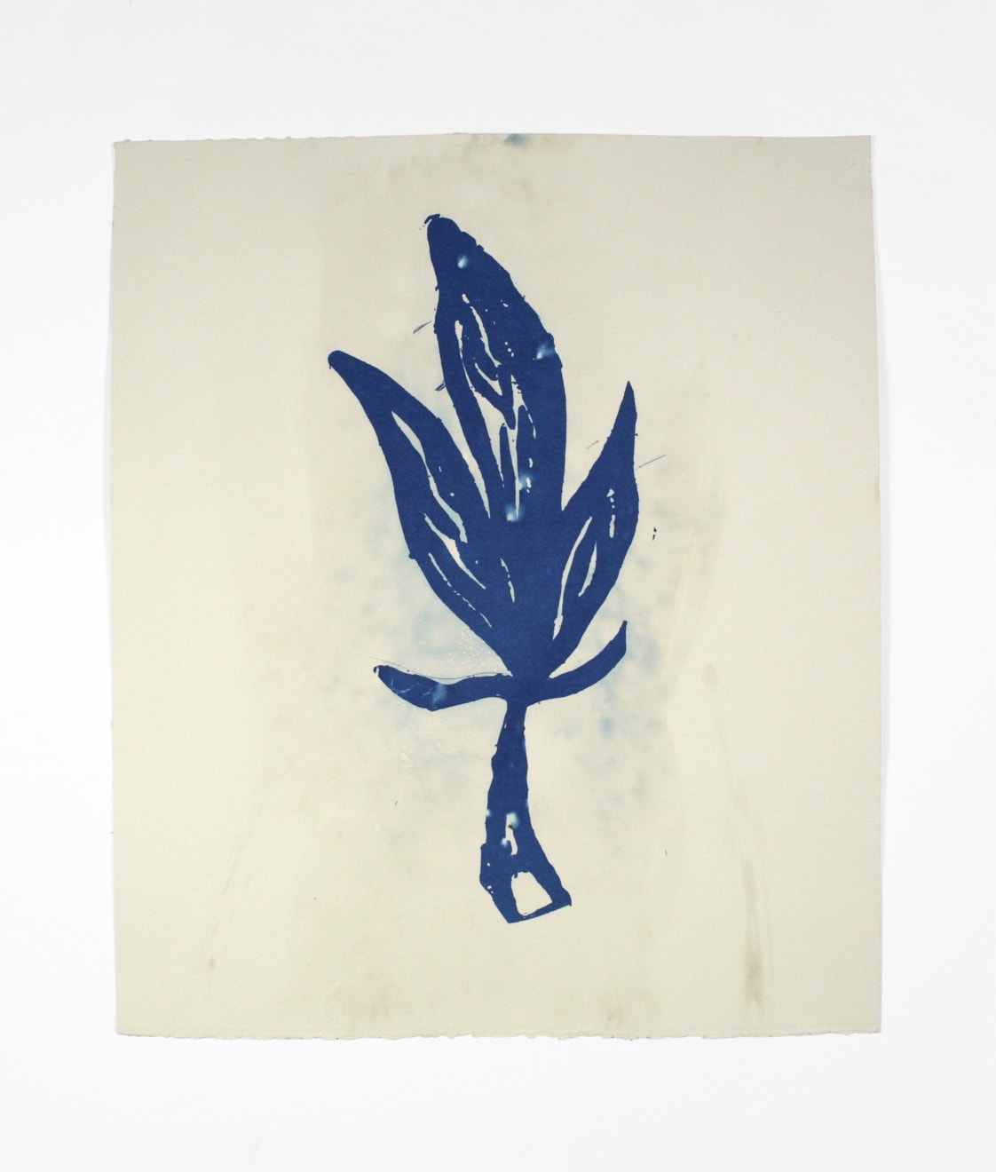 Dario Robleto Azures of the Natural World (Hendrix), 2014 cyanotype, ghost image of an original drawing by Jimi Hendrix, sunlight, ocean water, watercolor paper 13 1/8 x 11 in (33.3 x 27.9 cm) DR 370 SOLD