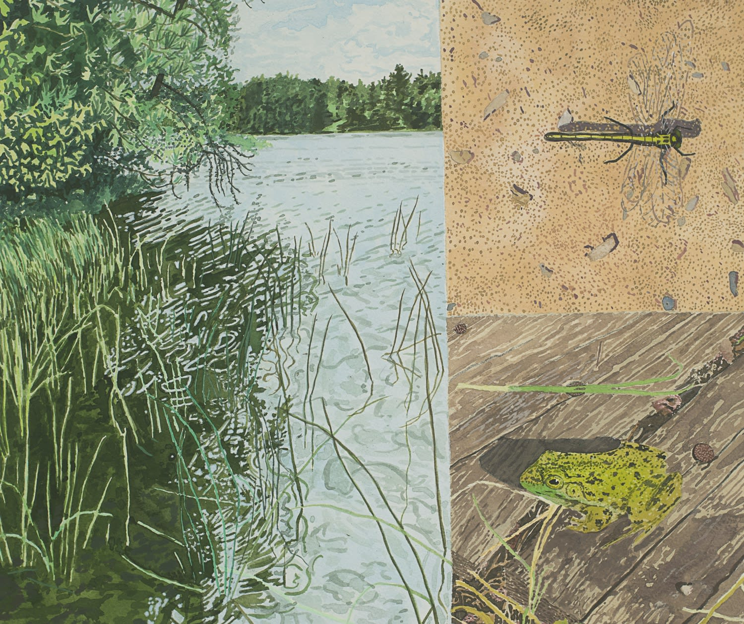 Breehan James, Cottage Book Painting: Lake/Frog/Dragonfly, 2020 acrylic gouache on paper on panel, 11 x 13 in