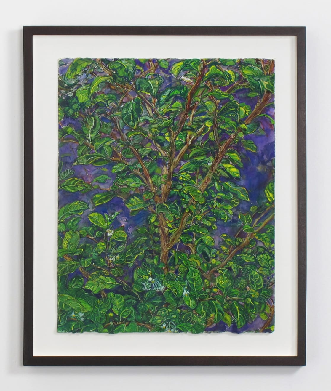 Beth Secor Young Hawthorne Late Summer, 2011-2013 ink, gouache, and pencil on paper 20 x 16 in (50.8 x 40.6 cm) BS 236 $3,750