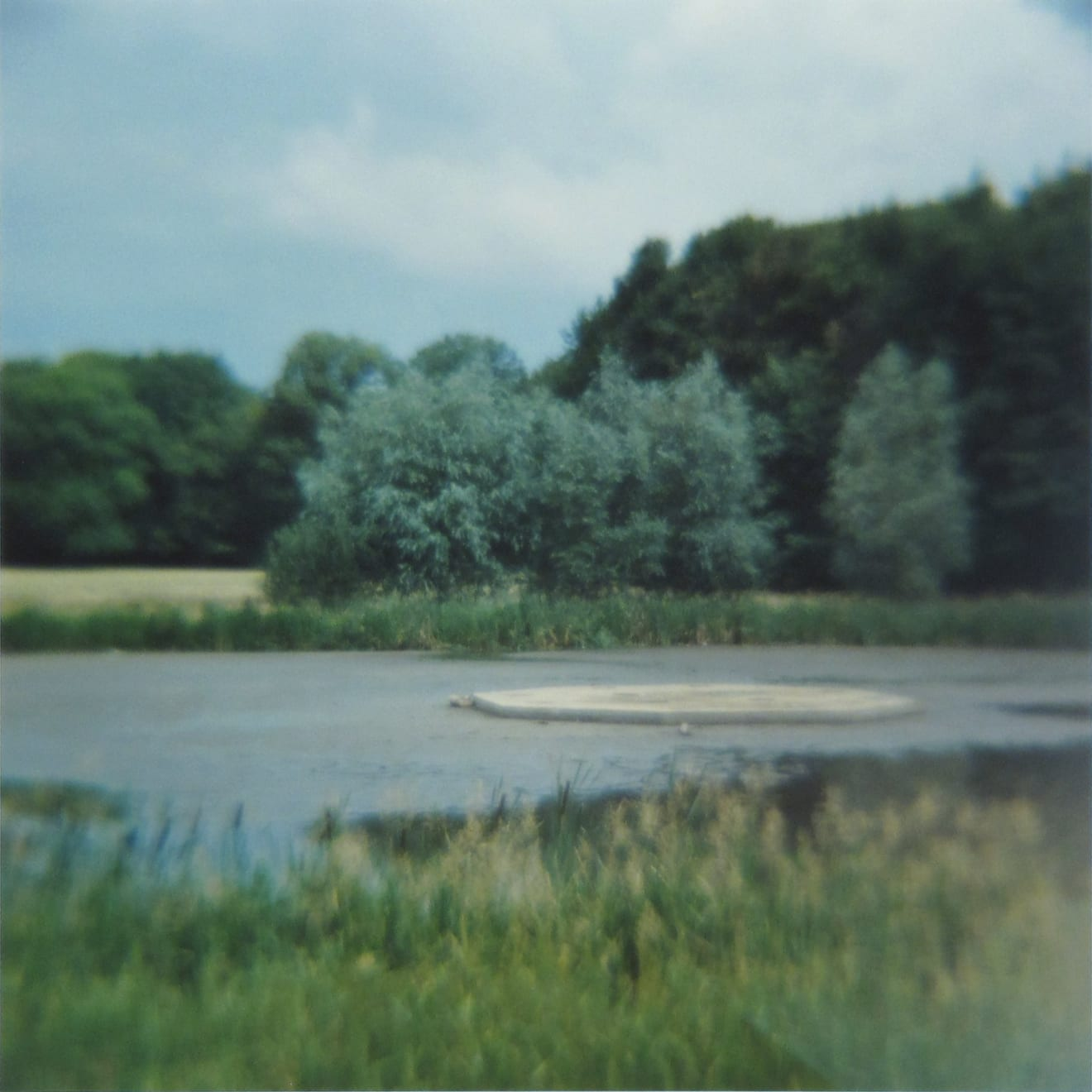 Amy Blakemore Park Pond, 2018 chromogenic print 15 x 15 in (38.1 x 38.1 cm) ABL 258 $3,000