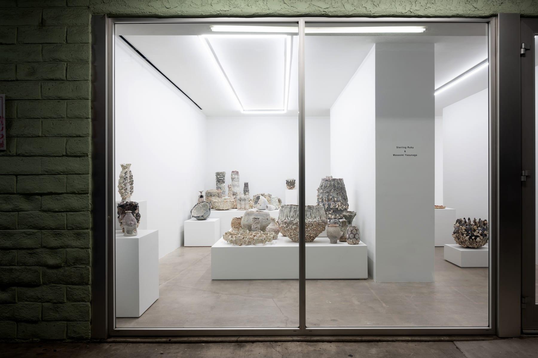 Installation View: Msaomi Yasunaga