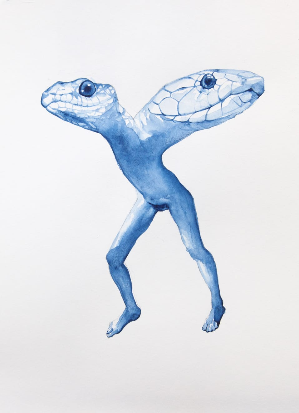 Kirsty Whiten, Double-Headed Snake, 2019, Watercolour, 35 x 25 cm