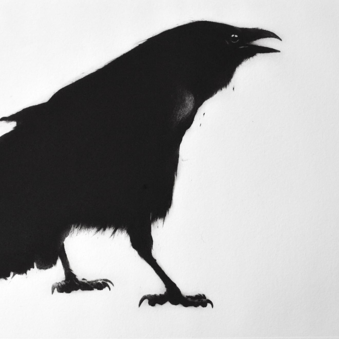 Summer Auction 2020, LOT 66 - Sarah Gillespie - 'Crow', 2020