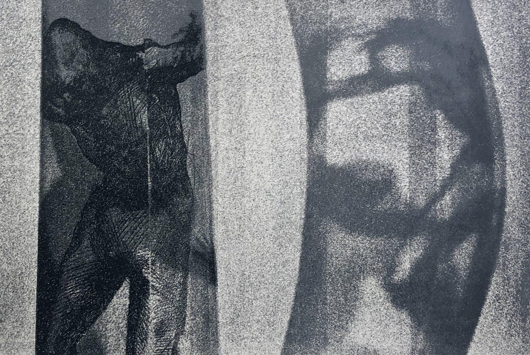 Veta Gorner, Travelling Light, 2012