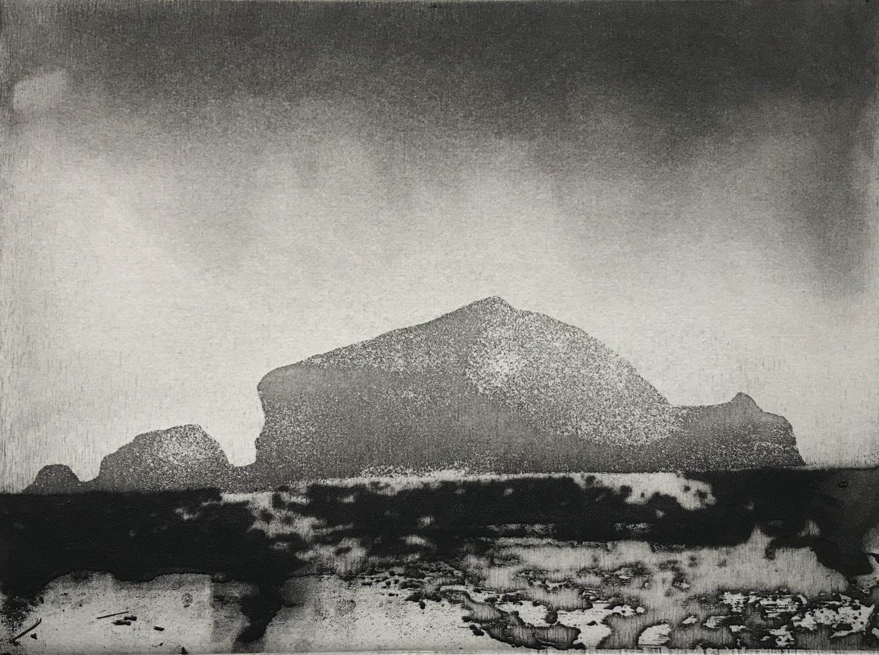 Jason Hicklin, South Gut Grassholm Island, 2020