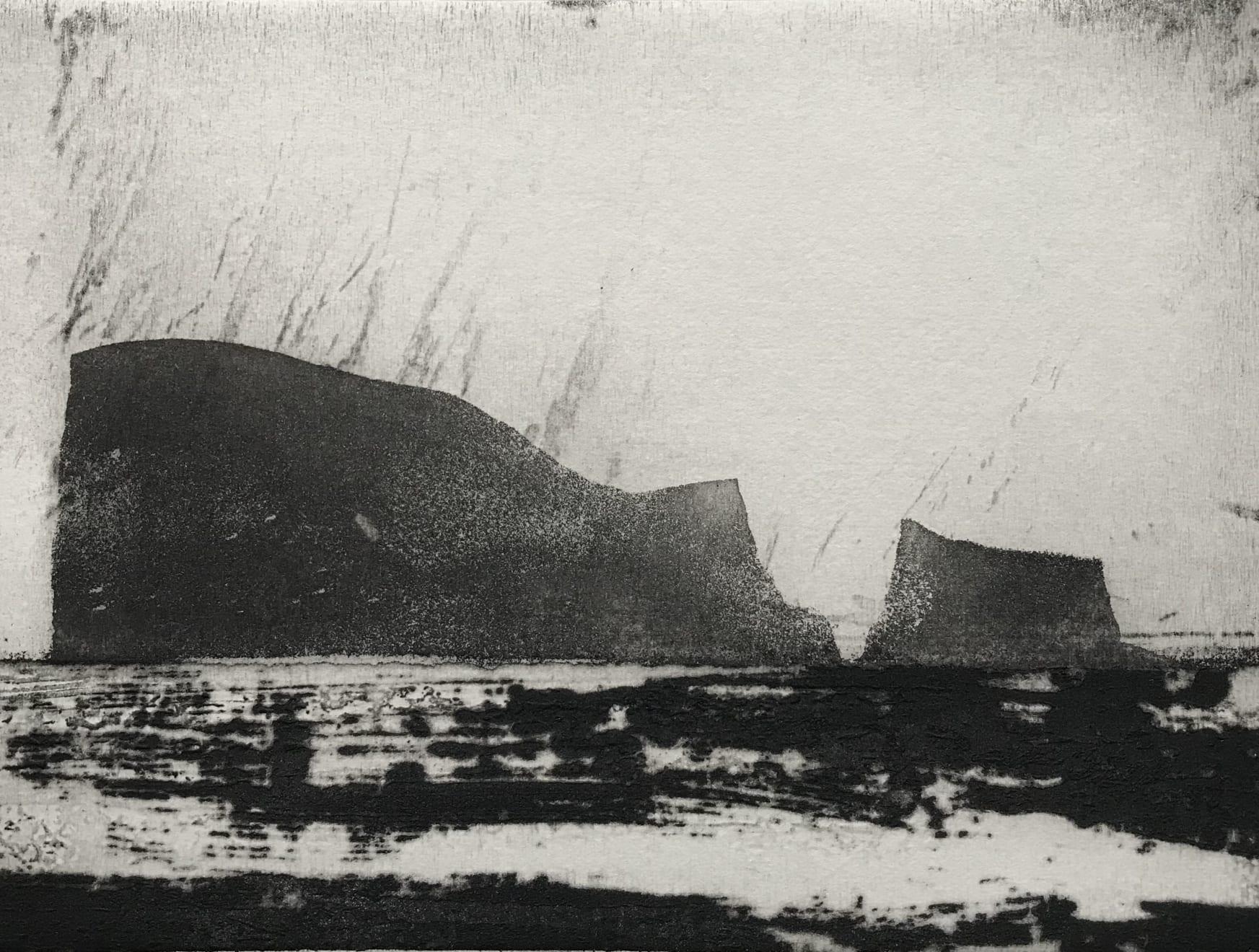 Jason Hicklin, East Tump Grassholm Island, 2020