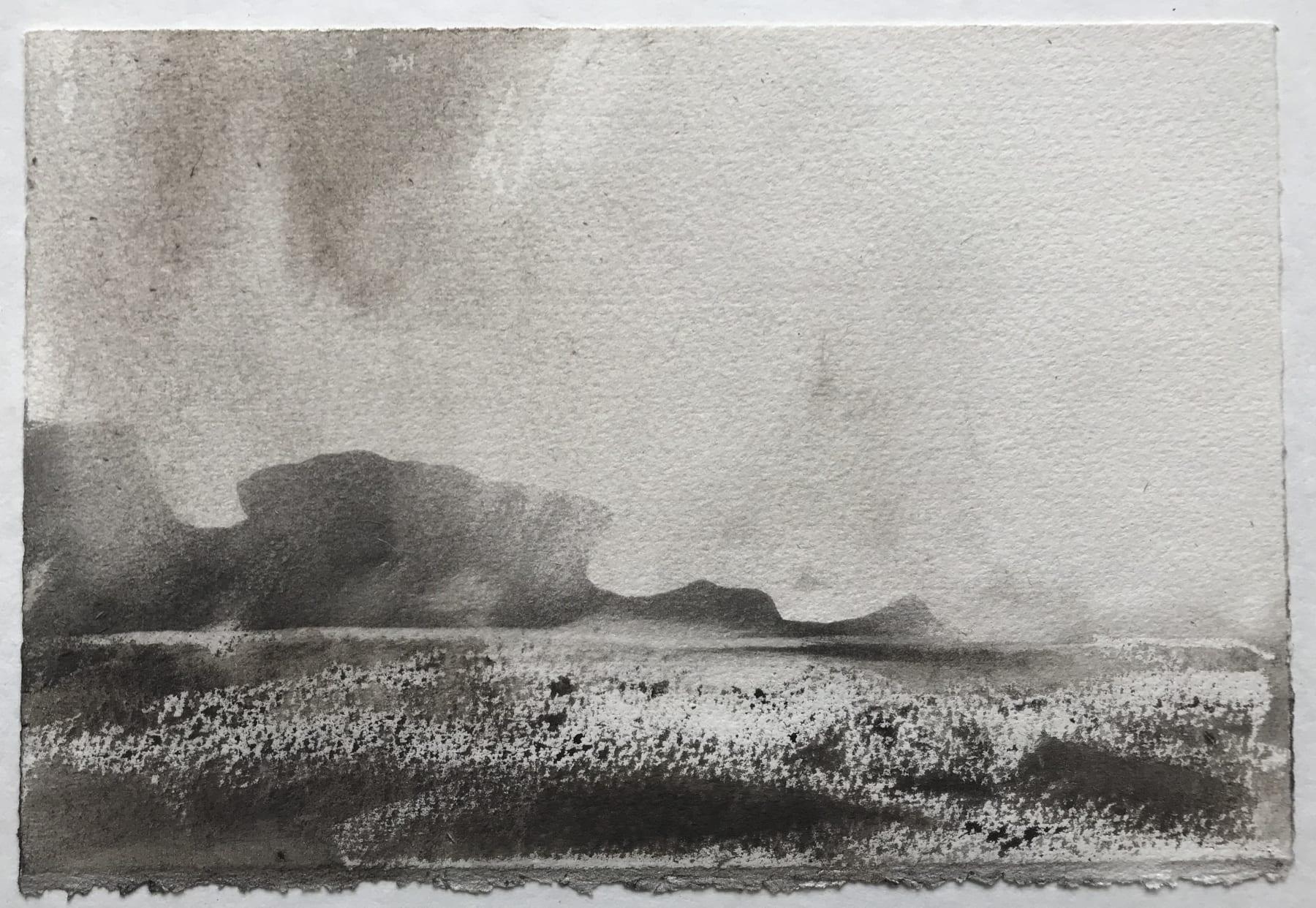 Jason Hicklin, West Tump, Grassholm Island, 2020