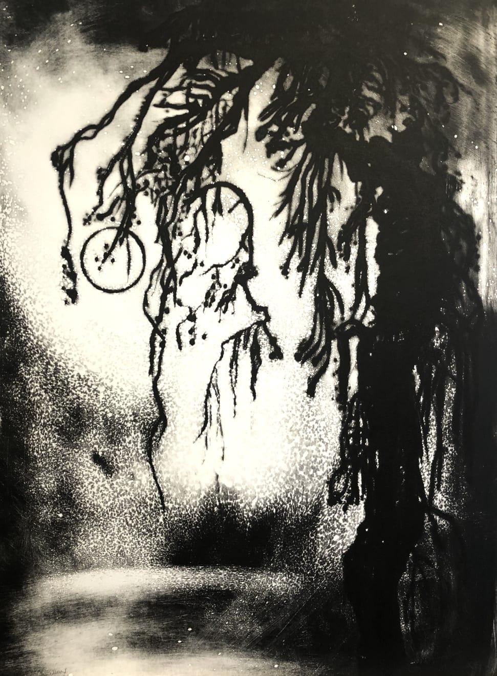 Edward Twohig, Vecchio Salice Piangente, Bacchiglione, Padova, Italia. (Old Weeping Willow), 2019