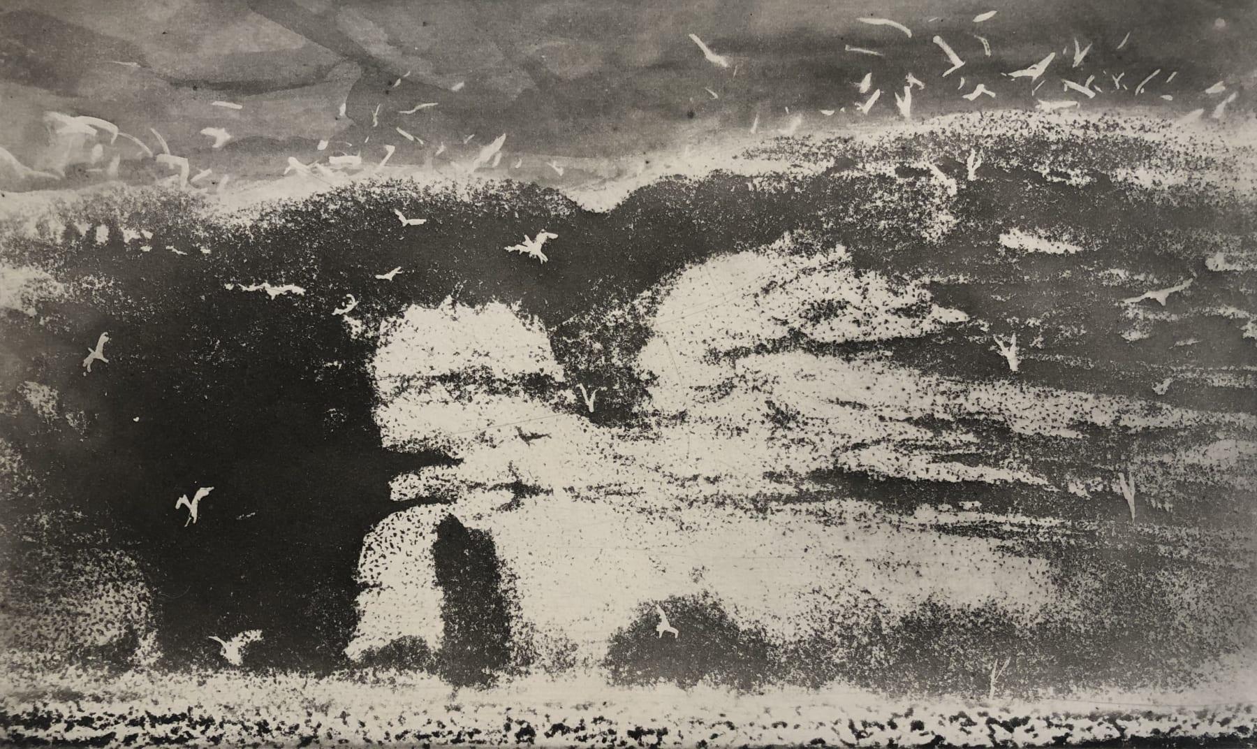Norman Ackroyd, Bempton Cliffs - Crab Rock, 2020