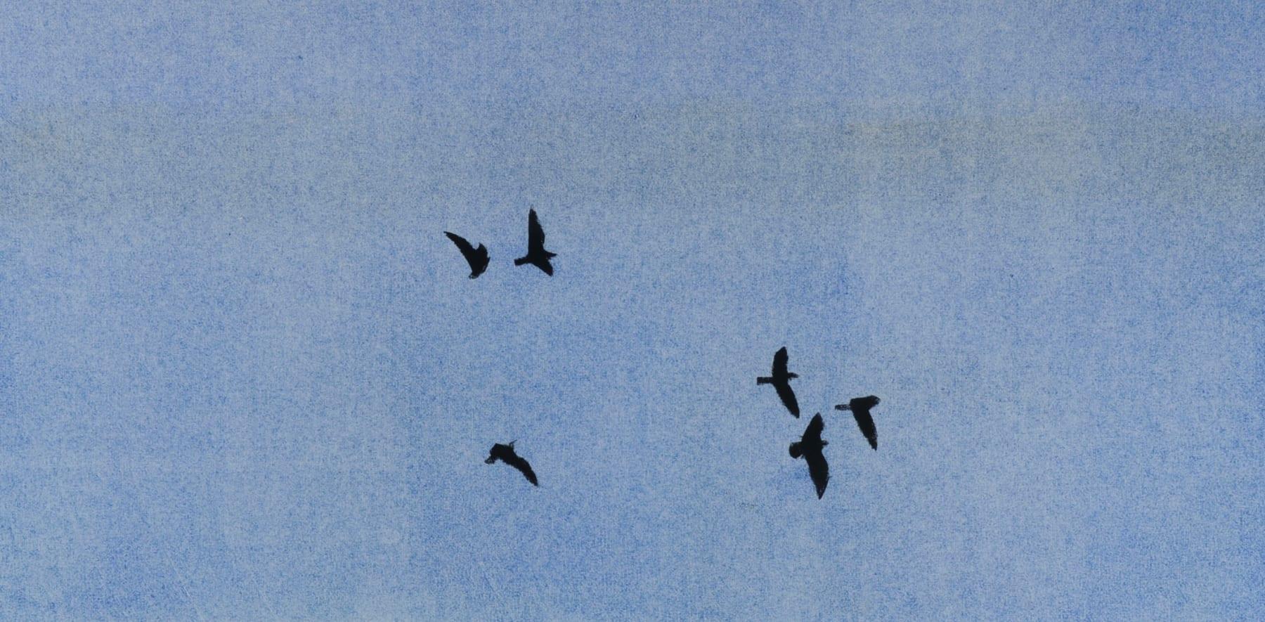 Nigel Swift, Six Birds, 2020