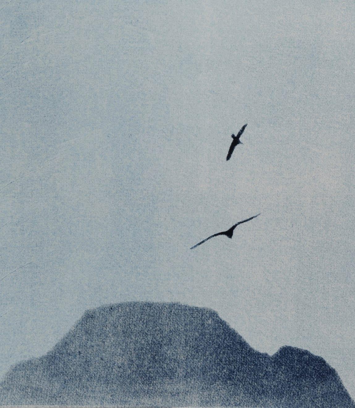 Nigel Swift, Soaring Birds, 2020