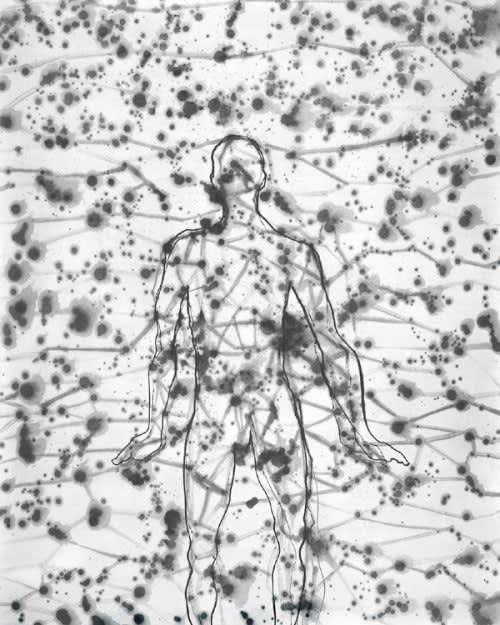 Antony Gormley, Domain, 2000