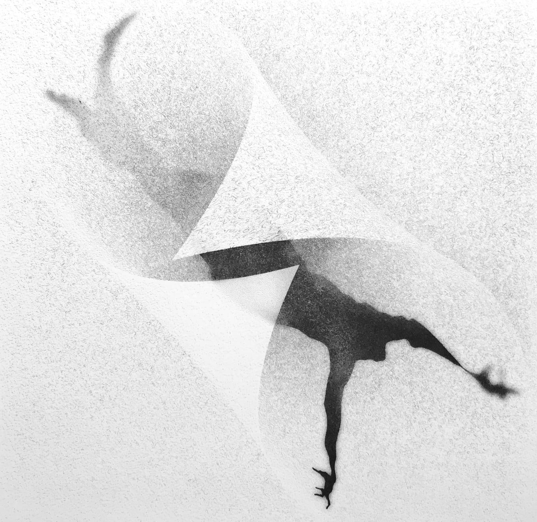Veta Gorner, Into Thin Air, 2020