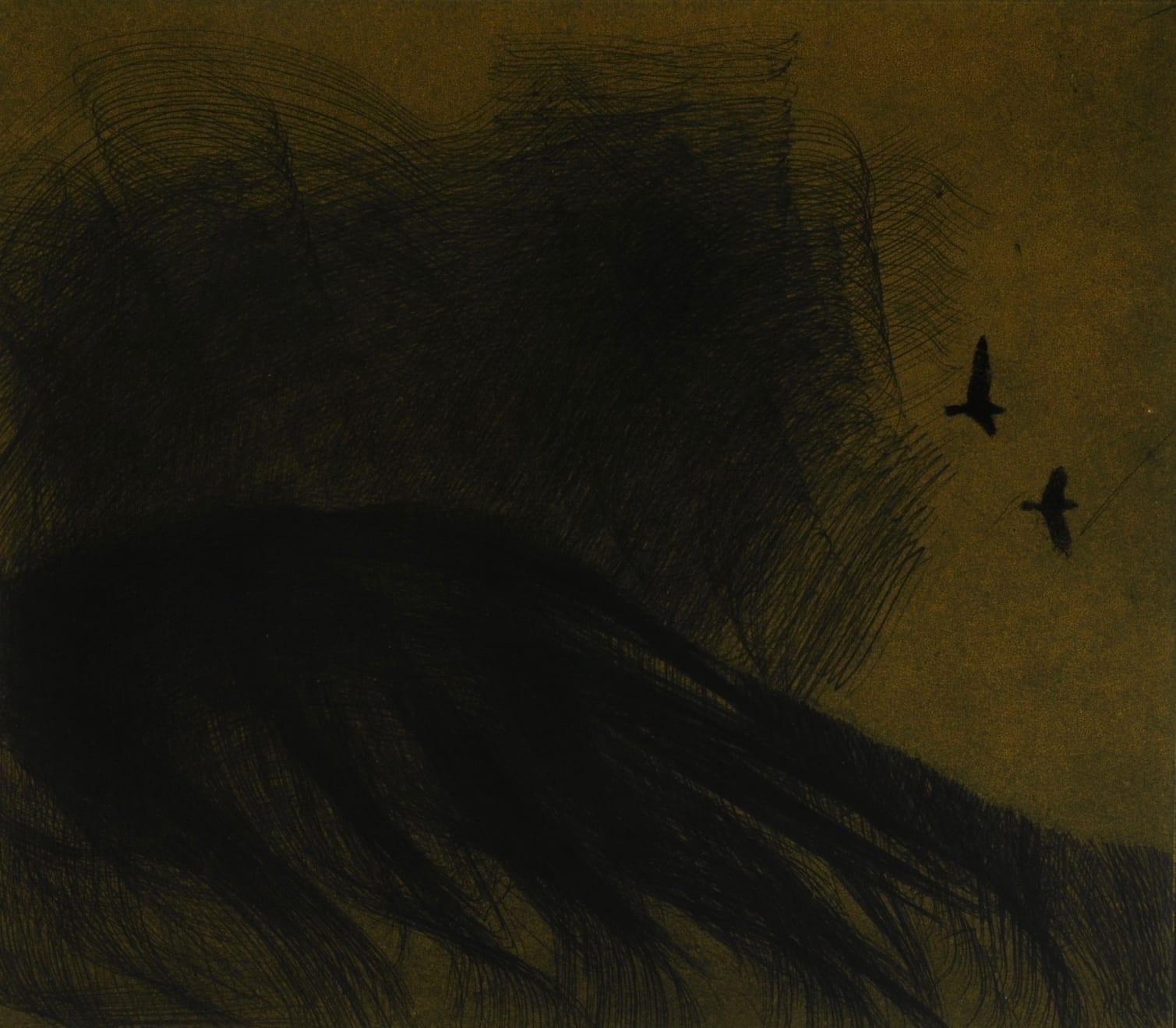 Nigel Swift, Frightened Birds, 2020