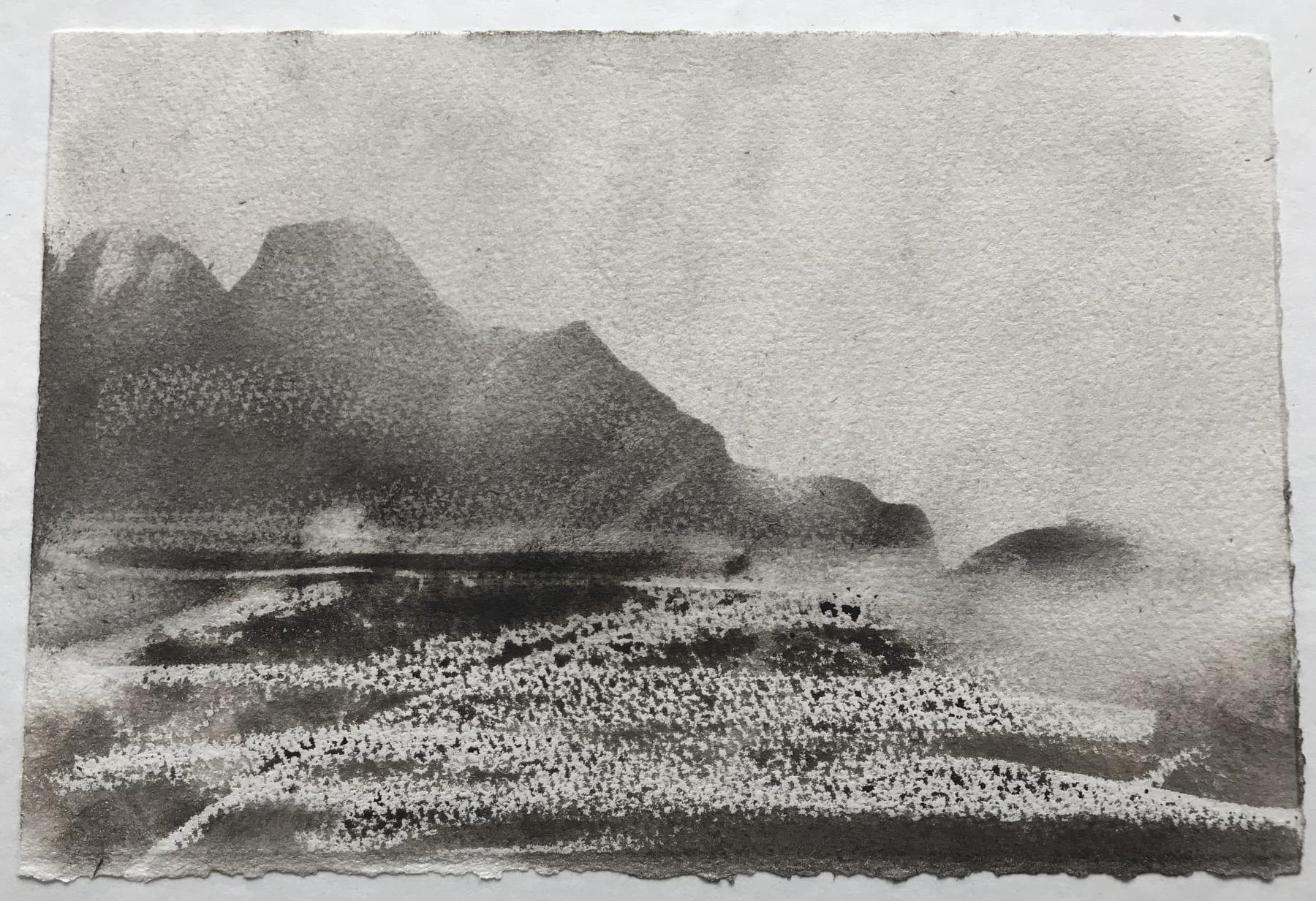 Jason Hicklin, North Gut, Grassholm Island, 2020