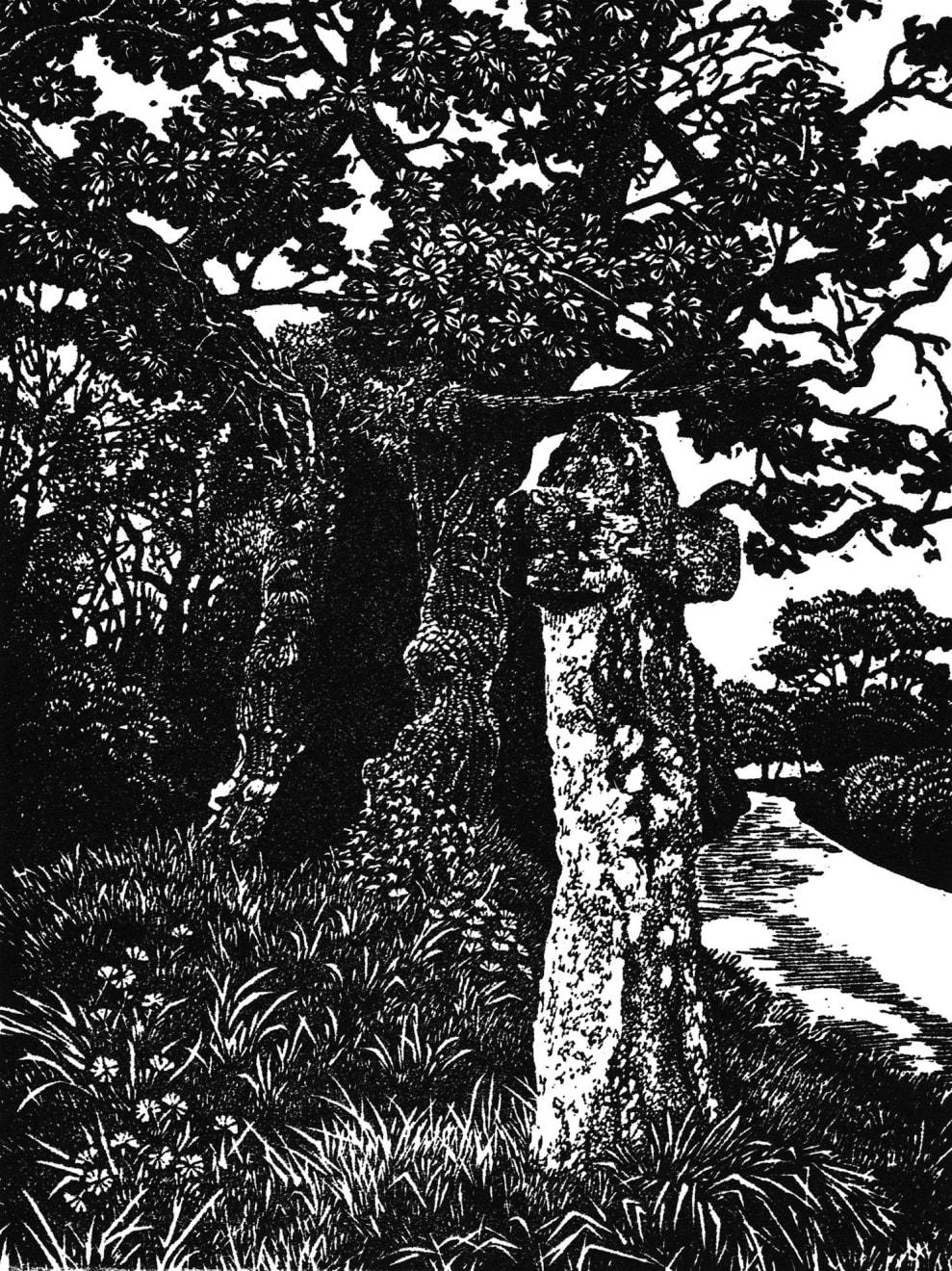Summer Auction 2020, LOT 37 - Blaze Cyan - 'Stumpy Oak at Hawson's Cross', 2020